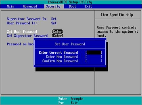 Установка пустого значения в поле ввода пароля